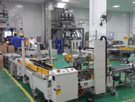 Cereal counting packaging assembly line